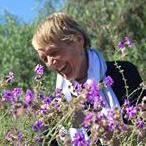 Gudrun Penselin